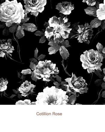 Cotillion Rose