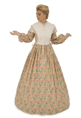 Civil War Styled Gown and  Lace Fichu