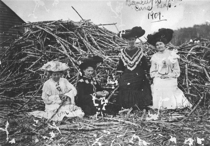 Women sitting in front of a sugarcane heap in 1909
