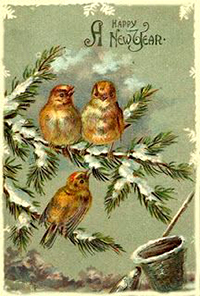 New Year Greetings 2017 caption contest - winter birds