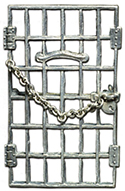 Jailed for Freedom brooch