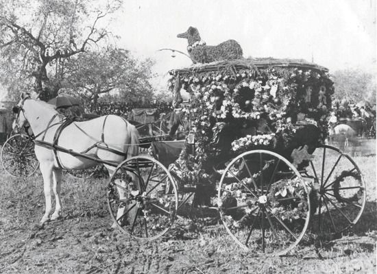 1893 winning carriage