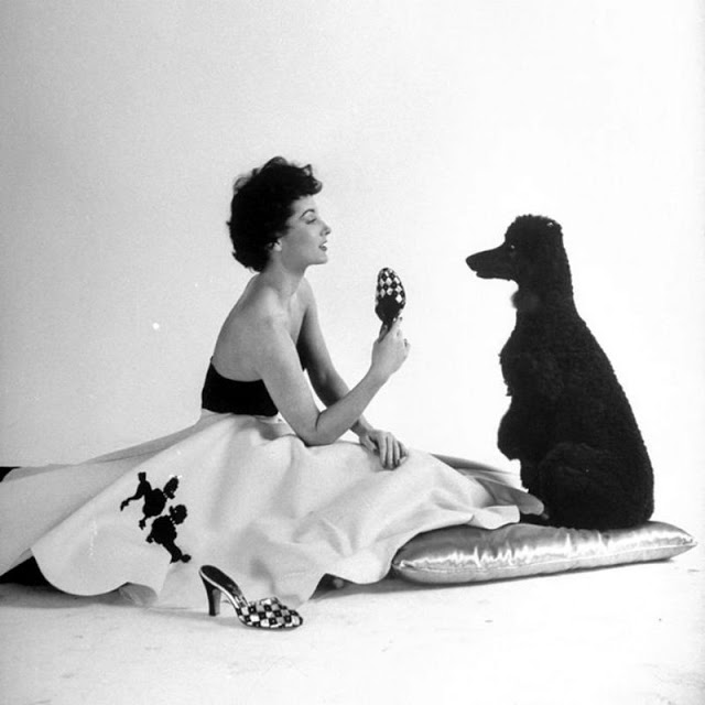 Black and white image of a woman in a white poodle skirt and black top looking at a black poodle